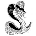 CobraCC