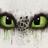 Maary0909's avatar
