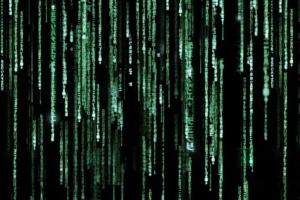 Seangorter matrix preview