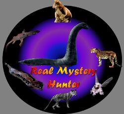 Real Mystery Hunter
