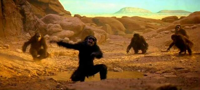 File:Space-odyssey-apes s$%t.jpg