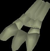 Rare fossilised limbs detail