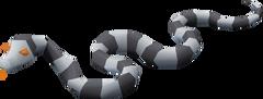 Sea Snake Young