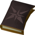 Ancient diary detail.png