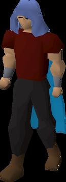 Castlewars hood (Saradomin) equipped