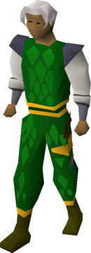 Green d'hide (g) set equipped