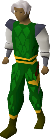 File:Green d'hide (g) set equipped.png