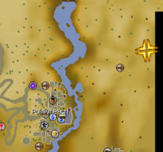 Desert lizard location