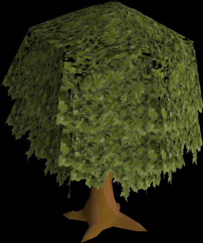Oak tree built