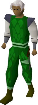 Green d'hide (t) set equipped