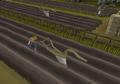 Ploughing Hosidius field.png