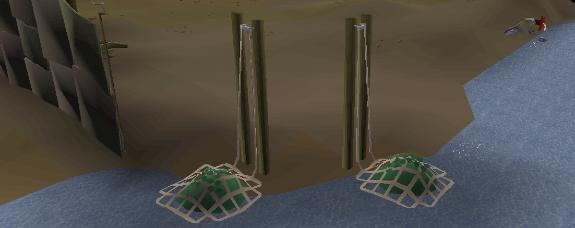 Key Update & Seaweed (2)