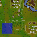 Scout (Tree Gnome Stronghold) location.png