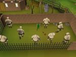 Emote clue - cheer ogre training camp