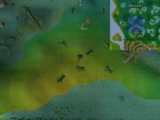 Mort Myre Swamp bloom location
