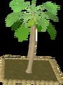 Papaya tree.png
