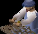 Fishing tutor