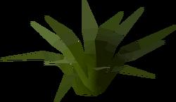 Plant built