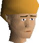 File:Broken bark snelm chathead.png