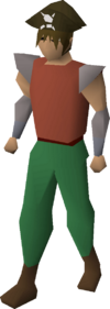 Pirate's hat equipped