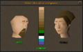 Make-over mage interface.png