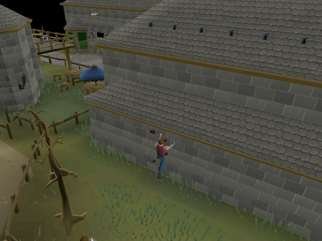 File:Varrock Agility Course 1.png