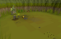 Bryophyta- The Moss Giant Boss (2).png