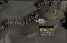 Eagles Peak Pass eagle