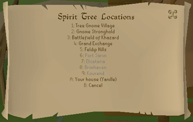 Old School RuneScape's 5th Birthday (11)