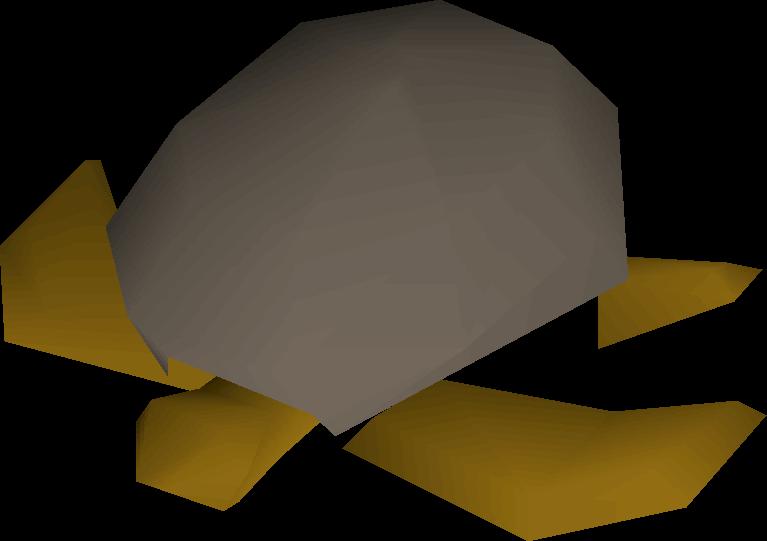 Sea turtle | Old School RuneScape Wiki | FANDOM powered by Wikia