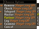 Slayer Partners & Teleports
