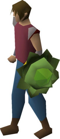 File:Cabbage round shield equipped.png