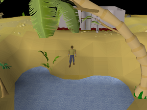 Treasure Trails/Guide/Coordinates | Old School RuneScape Wiki