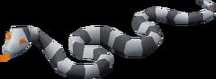 Sea Snake Hatchling