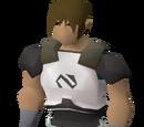 Elite Void Knight equipment