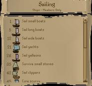Sailing skill guide ships 1