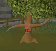 Ent (oak)
