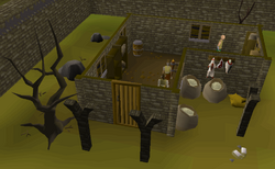 West Ardougne General Store