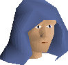 Castlewars hood (Saradomin) chathead