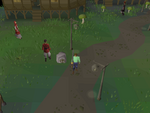 Emote clue - dance centre canifis