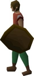Wooden shield equipped
