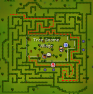 Tree Gnome Village maze map