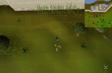 Enchanted Key Falador
