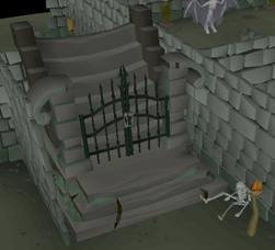 Old School RuneScape's 5th Birthday (12)