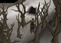 The Kendals Cave.png