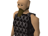 Squire (Void Knights general store)