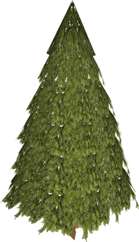 File:Evergreen.png