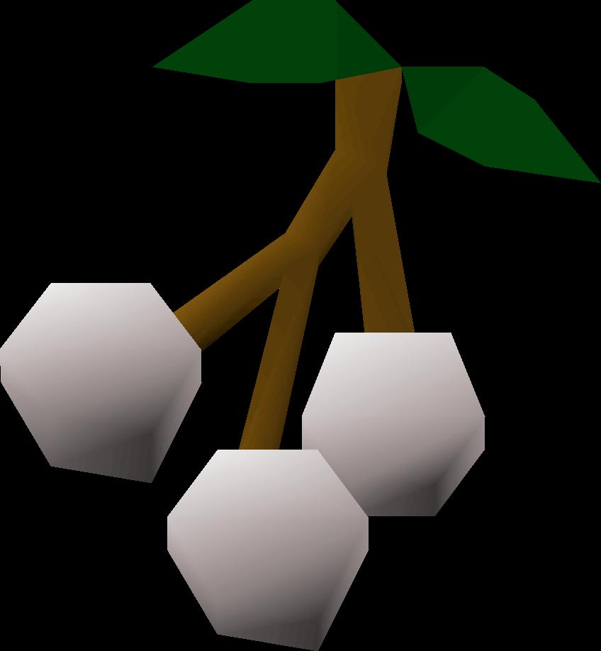 White berries detail