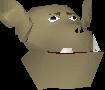 Kob chathead