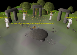 2017 Midsummer event ritual